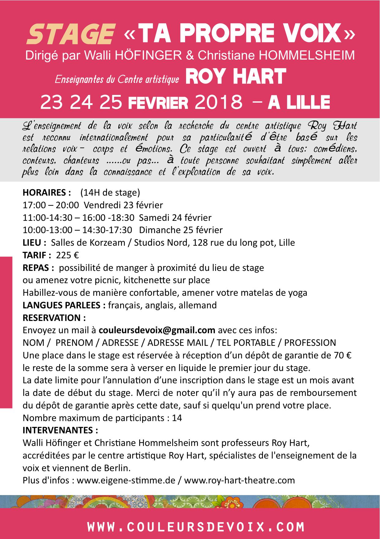 FLYER stage roy RHT lille fevrier 2018-3 association couleurs de voix